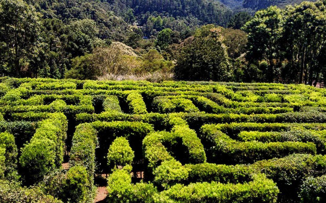 Tudo Sobre o Belíssimo Parque Amantikir – Jardins que falam